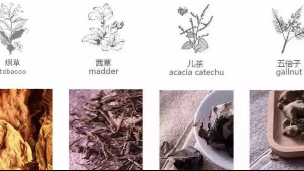 目前羊绒衫加工中可使用的植物染料都是什么植物提取出来的?